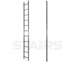 Лестница односекционная приставная 11 ступеней